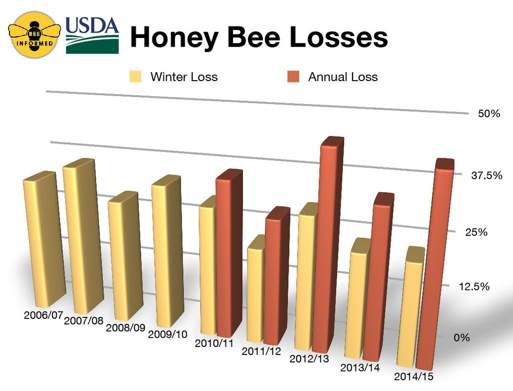 Credit: Bee Informed Partnership/University of Maryland/Loretta Kuo