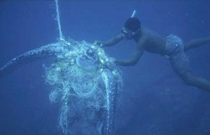 Diver trying to rescue a turtle caught in a net