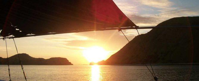 Dive Komodo: Labuan Bajo, Flores, Indonesia Review