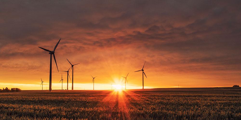 Donald Trump environmental policy